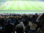 Родной стадион