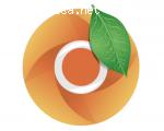 Mandarin browser отзывы