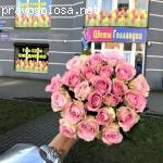 Цветы Голландии отзывы