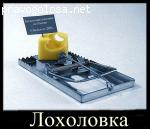 Отзыв на komopt.ru