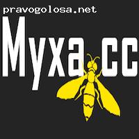 Отзыв на Myxa.cc - Обмен электронных валют