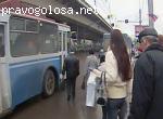 Качество общественного транспорта в Москве