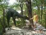 Потрясающий сафари-парк в Геленджике