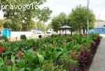 Парк-отель Лазурный берег отзывы