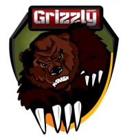 Grizzly Airsoft (интернет-магазин Гриззли Аирсофт)