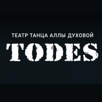 Театр Аллы Духовой