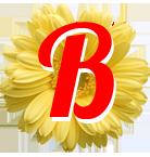 """Парикмахерская Эконом класса """"Весна"""""""